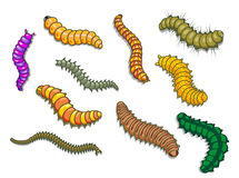 Cartoon worms Stock Photography