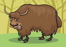 Cartoon Yak Stock Photos