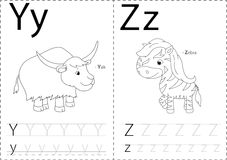 Cartoon yak and zebra. Alphabet tracing worksheet: writing A-Z a. Cartoon yak and zebra. Alphabet tracing worksheet: writing A-Z, coloring book and educational Stock Photos