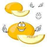 Cartoon yellow melon fruit with slice Royalty Free Stock Photography