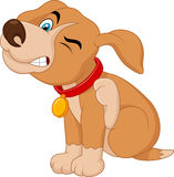 Cartoon A young Pit Bull puppy scratching an itch Stock Image