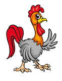 Cartoon young rooster Stock Images