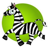 Cartoon zebra  character.striped cute animal. Illustration Stock Photography