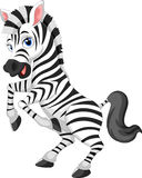 Cartoon zebra Royalty Free Stock Image