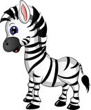 Cartoon Zebra Vector Illustration Stock Photography