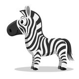 Cartoon Zebra, vector Royalty Free Stock Images