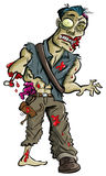 Cartoon zombie with arm eaten off. Isolated on white Royalty Free Stock Image