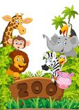 Cartoon zoo animals collection Stock Photos