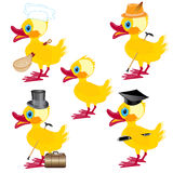 Cartoons on duck Royalty Free Stock Photography