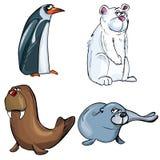 Cartoons of set of artic animals Royalty Free Stock Photos