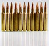 Cartouches de fusil Images stock