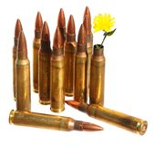 Revival. Defense. Independence. Cartridge case with wild yellow flower in place of bullet out. Ammunition in background. Revival. Defense. Independence. Isolated stock images
