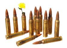 Revival. Defense. Independence. Cartridge case with wild yellow flower in place of bullet out. Ammunition in background. Revival. Defense. Independence. Isolated royalty free stock photo