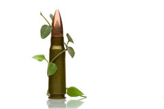 Cartridge and green sprout - antiwar concept Royalty Free Stock Photo