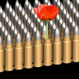 Cartridges and flower Royalty Free Stock Images