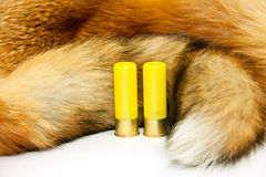 Cartridges on red fox fur Stock Images