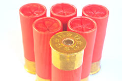 Cartridges for shotgun 12 caliber Royalty Free Stock Photography