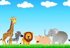 Cartton animal no selvagem Imagem de Stock