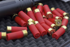 Cartucce per fucili a canna liscia Fotografia Stock