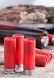12 cartucce per fucili a canna liscia del calibro Fotografie Stock Libere da Diritti