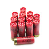 12 cartucce per fucili a canna liscia del calibro isolate Immagine Stock Libera da Diritti
