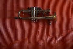 Cartucho de bronze na parede Fotos de Stock Royalty Free