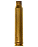 Cartucho de la escopeta Foto de archivo libre de regalías