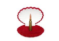 Cartucho na caixa vermelha Foto de Stock Royalty Free