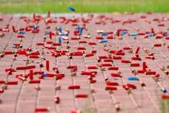 Cartuchos rojos y azules del primer de los rifles de la caza como fondo fotografía de archivo libre de regalías