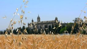 Cartuja monastery, Jerez de la Frontera stock video footage