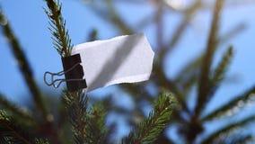 Cartulina del papel en blanco en rama del abeto Imágenes de archivo libres de regalías