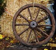 Cartwheel Royalty Free Stock Images