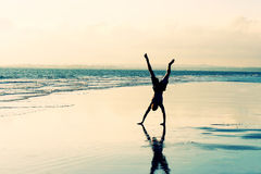 Cartwheel da praia Foto de Stock