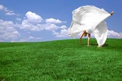 Cartwheel in the Summertime Stock Photos