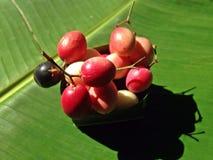Carunda or karonda Stock Photography