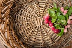 Carunda, Karonda fruite in rotandienblad Royalty-vrije Stock Afbeeldingen