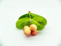Carunda ou Karonda, ce fruit peut traiter le cancer photos libres de droits