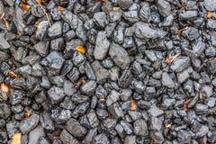 carvão fotos de stock royalty free
