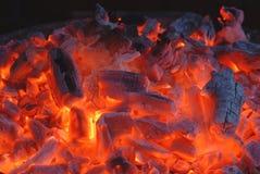 Carvão ardente Imagens de Stock