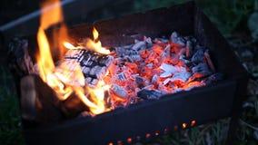 Carvão ardente video estoque