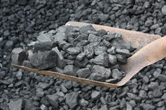 Carvão completo da pá Fotografia de Stock
