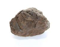 Carvão de Brown Fotografia de Stock Royalty Free