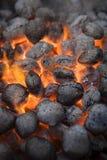 Carvão do assado fotografia de stock