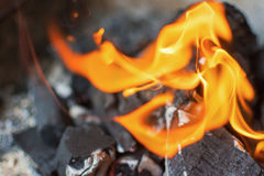 Carvão e incêndio Chamas brilhantes do fogo ardente Carvões amassados quentes do carvão vegetal Imagens de Stock