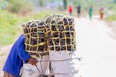 Carvão vegetal levando do homem para a refeição da família Fotografia de Stock Royalty Free