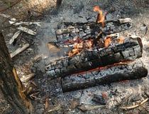 Carvões ardentes do fogo na campanha na natureza fotografia de stock royalty free
