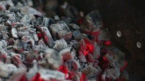 Carvões ardentes, fundo de incandescência do carvão vegetal video estoque