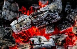 Carvões de queimadura da madeira como um fundo foto de stock royalty free