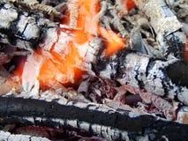 Carvões de uma fogueira ardente imagem de stock