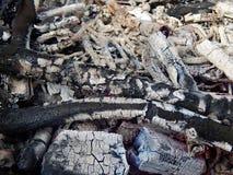 Carvões de uma fogueira ardente imagens de stock